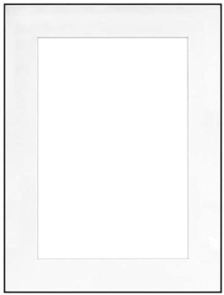Fineline Picture Frame Color Black Size 18 X 24 Frame 11 X 17 Mat