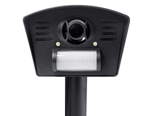 Gardigo Tiervertreiber mit Stroboskop LED | Katzenschreck, Hundeschreck mit Ultraschall | inkl. Kugelgelenk-Halterung und Erdspieß | Deutscher Hersteller