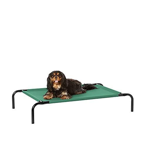 Amazon Basics - Cama elevada transpirable para mascotas, pequeña (90 x 55 x 19 cm), verde