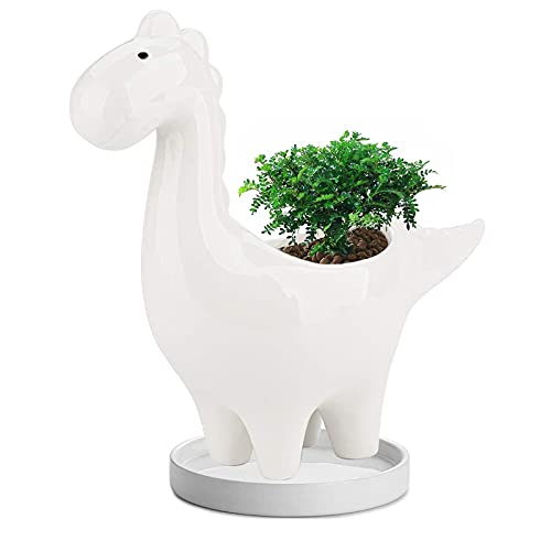 Dinosaur Ceramic Succulent Planter Pot with Drainage Hole Tray 7 inch Multipurpose Bonsai Plant Vase Creative Cactus Flower Pot for Home Office Garden Decoration