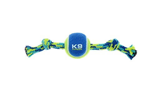 """ZEUS K9 Fitness Dog Toys by ZEUS Knotted Rope Bone, 9"""", Dog Rope Toy for Small Dogs (Color May Vary)"""