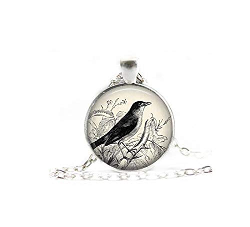 heng yuan tian cheng vogel ketting, nachtegaal ketting, vogel sieraden, vogel hanger, vogel cadeau