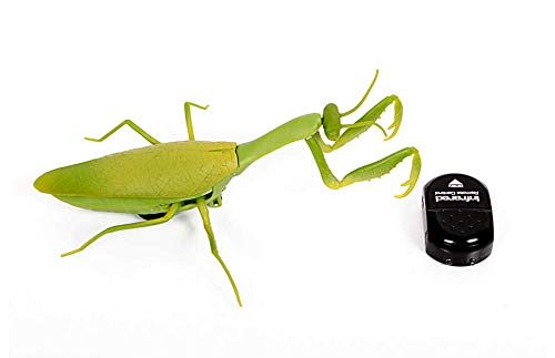 RC TECNIC Mantis Religiosa Insecto Teledirigido con Mando Co