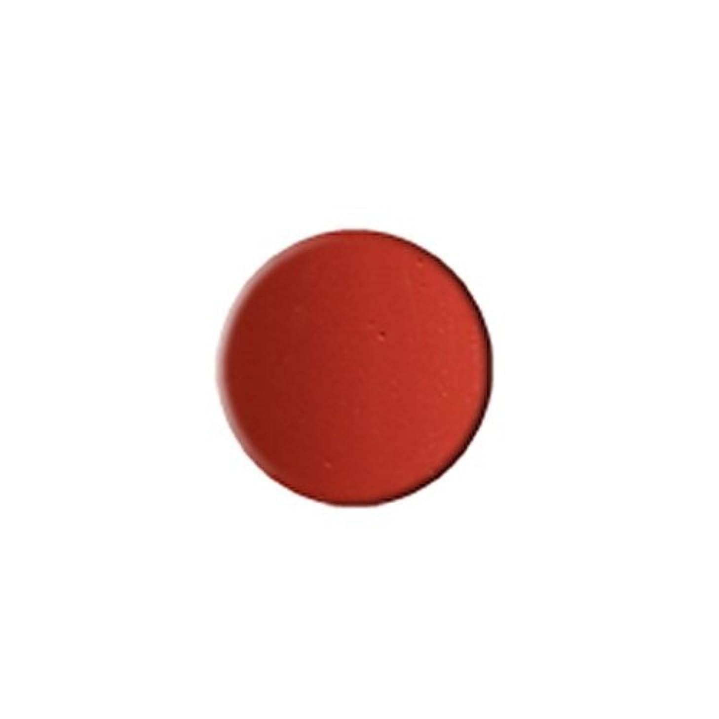 体現する属するコモランマKLEANCOLOR Everlasting Lipstick - Redwood (並行輸入品)