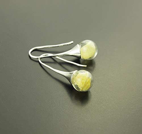 Echte getrocknete Blüten Ohrringe Creole Perle Glas creme gelb silbern Juvelato
