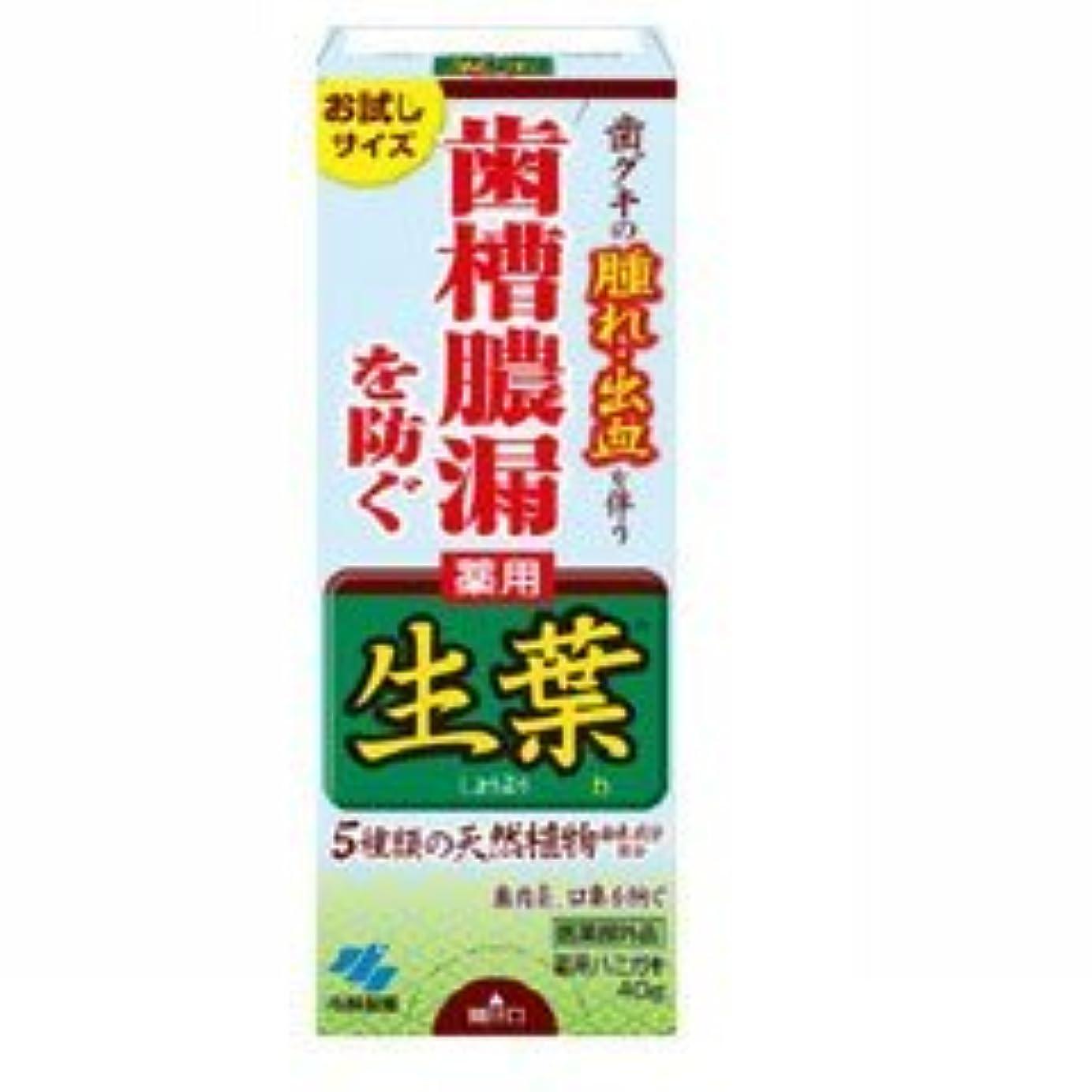 マイクロプロセッサフェードアウト怖い【小林製薬】生葉 お試しサイズ 40g