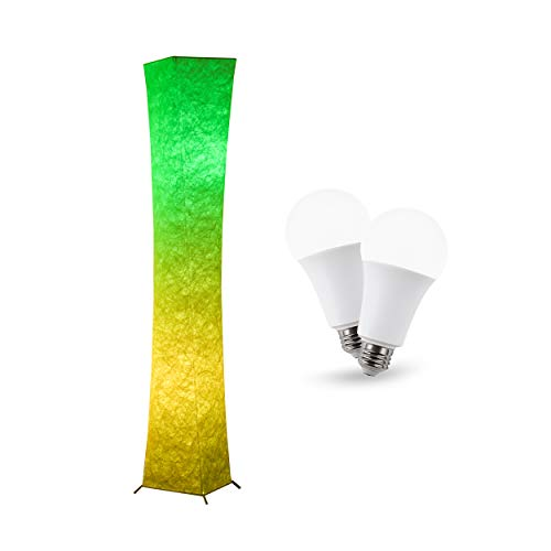 CHIPHY RGB Floor lamp with Remote, and 9W Emergency LED Bulb