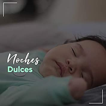 """"""" Noches Dulces """""""