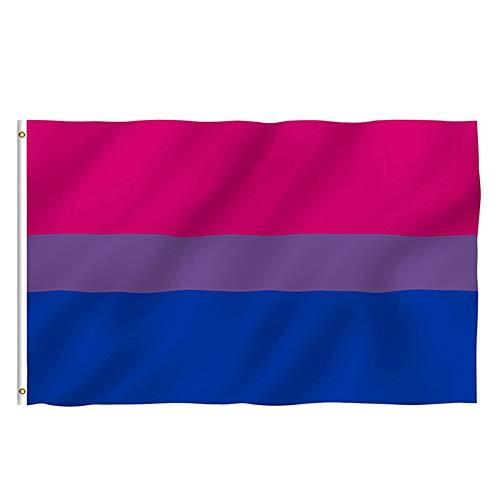 ANYIKE 3x5FT Biseksuele vlag, LGBT Regenboog Vlaggen, Vier Diversiteit op Bi Pride en Festivals Zomerpartijen