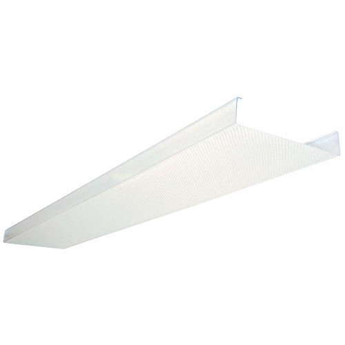 Lithonia Lighting DSB48 48 in. Square Basket Two Bulb Replacement Wraparound Lens, 4', Transparent