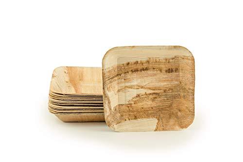 HMT Green Palmblatt Geschirr   Teller quadratisch 18*18cm   25 Stück Einweg-Schalen im Set   Stabil, hochwertig, ökologisch & nachhaltig   Palmware biologisch abbaubar   Snackschale