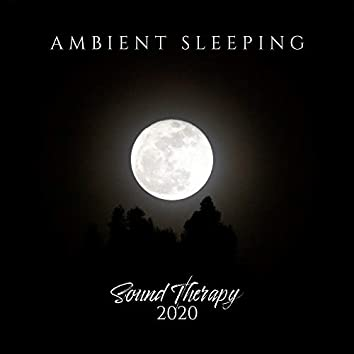 Ambient Sleeping Sound Therapy 2020