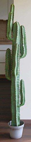 artplants.de Künstlicher Säulenkaktus Olivero im Topf, grün, 160cm - Deko Kaktus - Kunst Pflanze