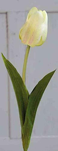 artplants.de Kunsttulpe Larissa, Creme-grün, 55cm - Textilblume/Kunststoff Tulpe - 3