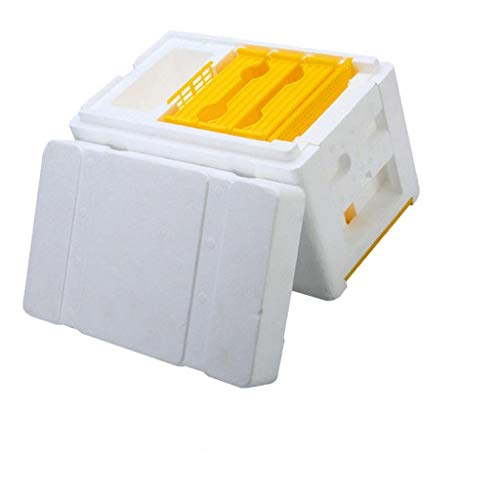 LOVIVER Bienenstock Bienenbox Imkerei Bienenkönigin Box Schaum Rahmen Bienenzucht Bienenkasten aus Kunststoff und Schaum