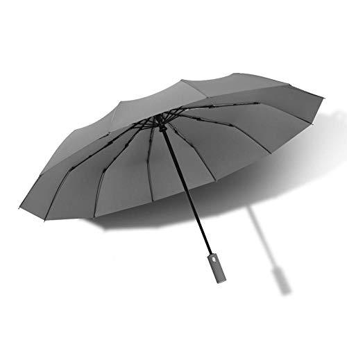 Travel paraplu stormvast volautomatische paraplu heren 12 ribben winddicht grote golf paraplu regen