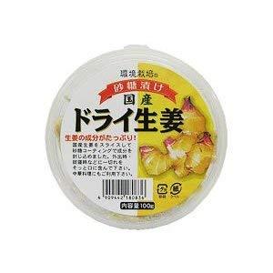 国産ドライ生姜 砂糖漬け 70g×10個 環境栽培 信州自然王国