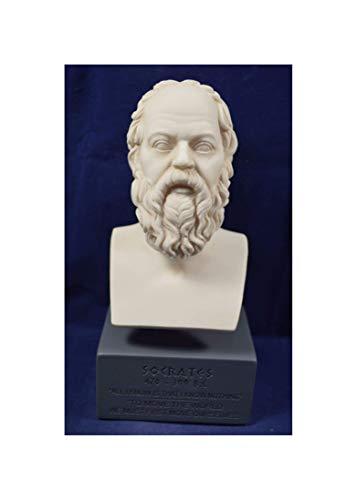 Estia Creations Sócrates Sculpture filósofo Griego Antiguo Museo reproducción Busto