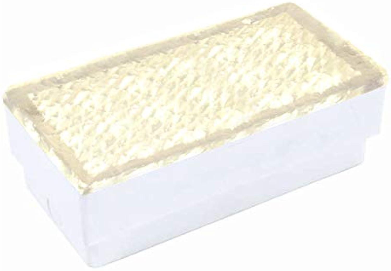 LED Pflasterstein Bodenleuchte Gartenstrahler Bodeneinbauleuchte Auenleuchte IP67 230V (Warmwei 10x20cm rechteckig  PF2)
