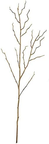 38 Max 46% OFF Inch Brown Twig Birch Wild OFFicial mail order