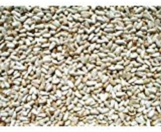 Safflower Bird Seed 10lb.
