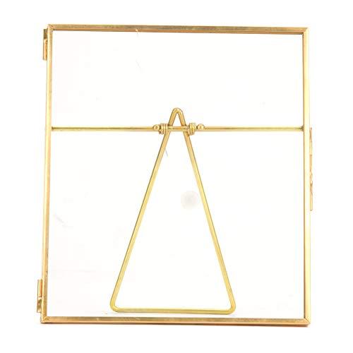 標本ホルダー、14x16cmゴールド銅バー植物標本ホルダーディスプレイフレーム標本クリップガラスバックブラケット付き家の装飾