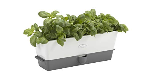 Cole & Mason Fresh Herb Range Self-Watering Potted Herb Keeper, Enamel Coated Steel, White and Grey, Triple