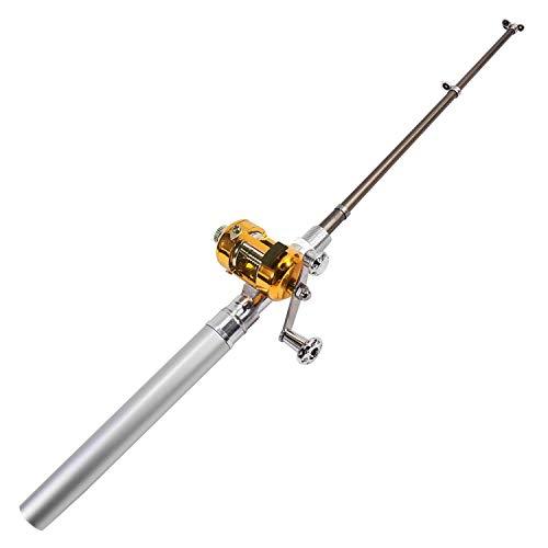 DIGIFLEX Caña de Pescar de Bolsillo en Forma de Bolígrafo - Plateado y Carrete Dorado