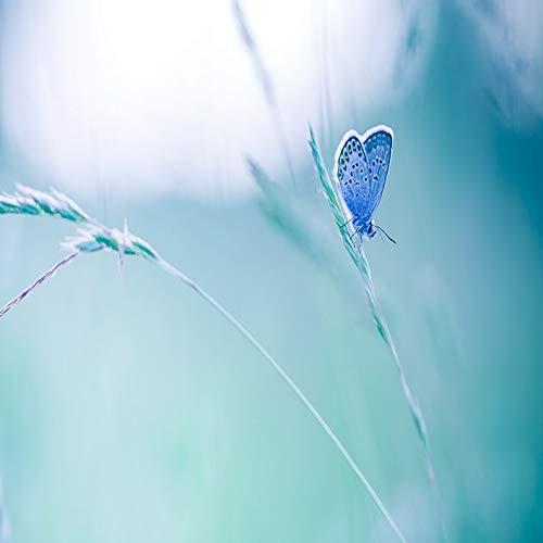 SFSDF Cortina de Ducha Mariposa en la Hierba Días de Primavera Prado Rural Vida Natural Salvaje en Colores Suaves Foto Verde Azul 180x220cm