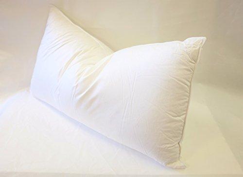 European 800 Fill Power White Goose Down Pillow. (King)