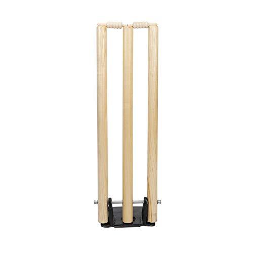 Graydon primavera diseño de postes para críquet ⭐