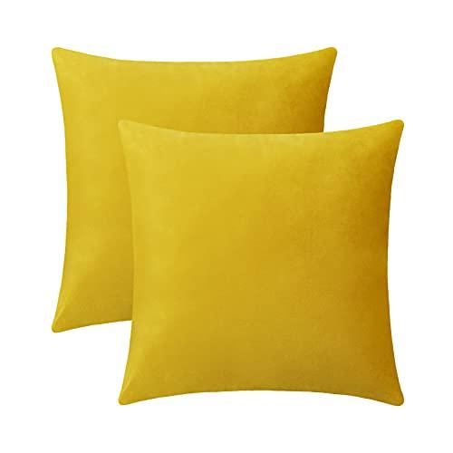 eletecpro Federa per cuscino 45 x 45 cm, set di 2 federe in velluto con cerniera nascosta, colore giallo limone, per divano e terrazza, soggiorno, camera da letto, disponibile in diversi colori