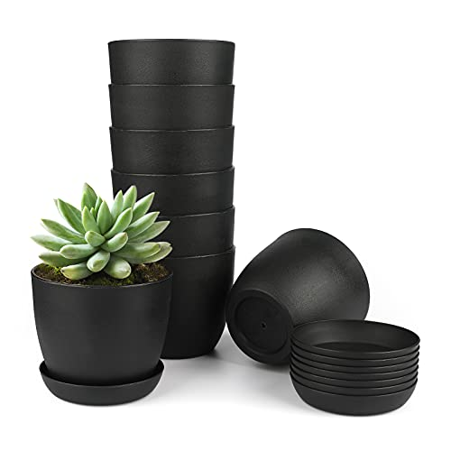 Kinglake - Vaso da fiori in plastica spessa 10 cm, rotondo, con vassoi per piante grasse e piccole piante in vaso, 8 pezzi, colore: nero