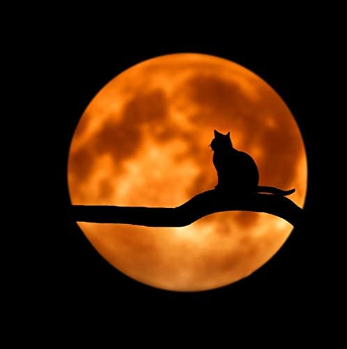 Baby Sleep Through the Night, Mindfullness Meditation World, Chillout Lounge