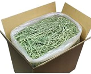 【30年度産新刈り】 牧草市場 スーパープレミアム チモシー 1番刈り 牧草 5kg(うさぎ・モルモットなどの牧草)