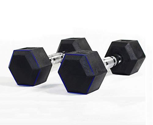 CWEN Pesas de Hierro con Recubrimiento de Goma hexagonales.Mancuernas fijas de Fitness 15kg, 17.5kg, 20kg, 22.5kg, 25kg, 27.5kg, 30kg, 32.5kg, 35kg, 37.5kg, 40kg, 45kg (Peso : 22.5kg)
