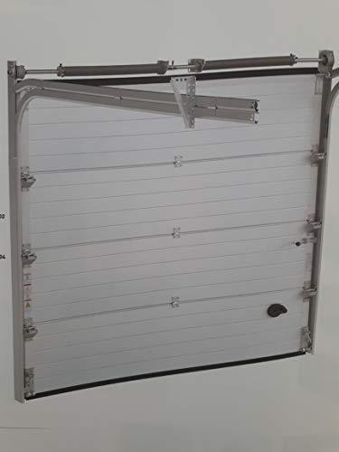 puerta seccional RA caja blanca con 4 cristales 3040 x 2180 mm Puerta de garaje