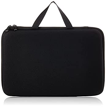 Amazon Basics Large Carrying Case for GoPro And Accessories - 13 x 9 x 2.5 Inches Black