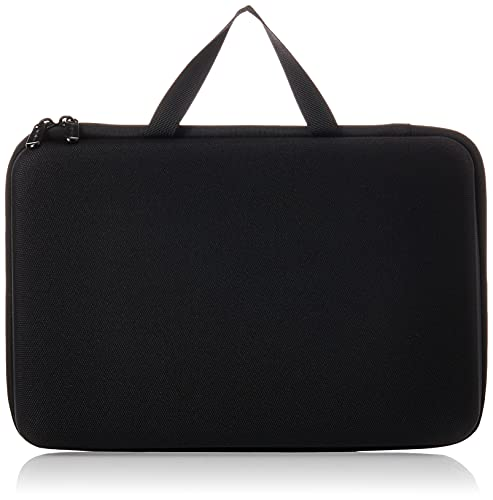 Amazon Basics Large Carrying Case for GoPro And Accessories