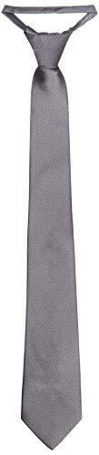 Park Avenue Men's Synthetic Necktie (PZNX17835-G6_Dark Grey_150)