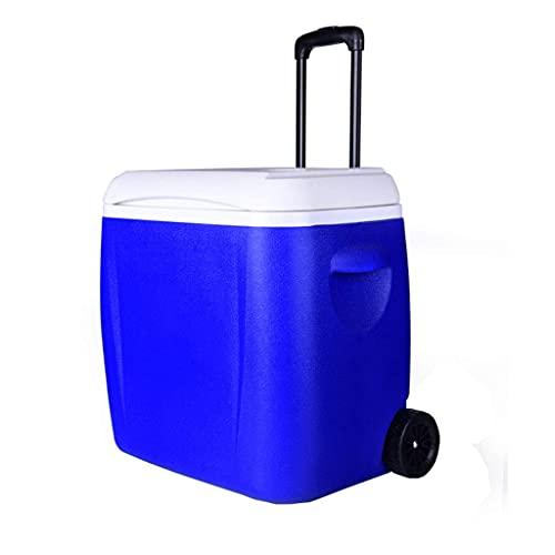 ROM Compresor Refrigeradores Enfriador/Calentador Refrigerador de Coche Termo Enfriador Aislado Bolsa de frío Caja Camping Almacenamiento de Alimentos para Viajes y Acampar
