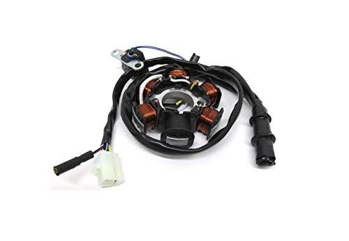 Lichtmaschine Stator Zündung für Peugeot Speedfight 1 2 AC LC, Vivacity, Buxy, Elyseo TKR, Trekker 50 100