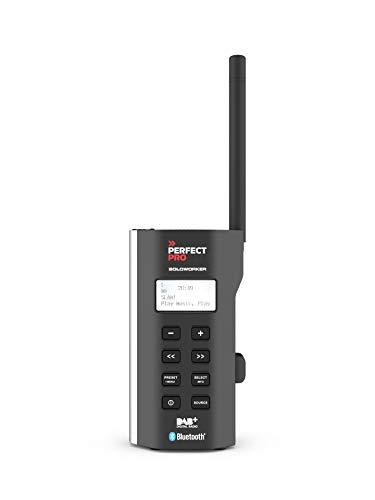 PerfectPro - Radio de Chantier - SOLOWORKER - réception Dab+ - FM - Bluetooth - entrée AUX - Chargeur et Pile au Lithium Inclus - Radio très compacte - IP64 - SWBT2
