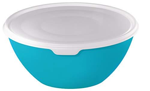 Rotho Schüssel mit Deckel 8l, Kunststoff (BPA-frei), blau/transparent, 8 Liter (35,5 x 35,5 x 15,5 cm)