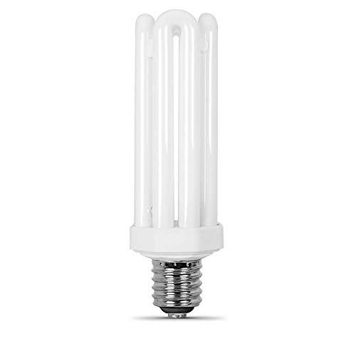 Compact Fluorescent Light Bulbs with Mogul Base, 65W
