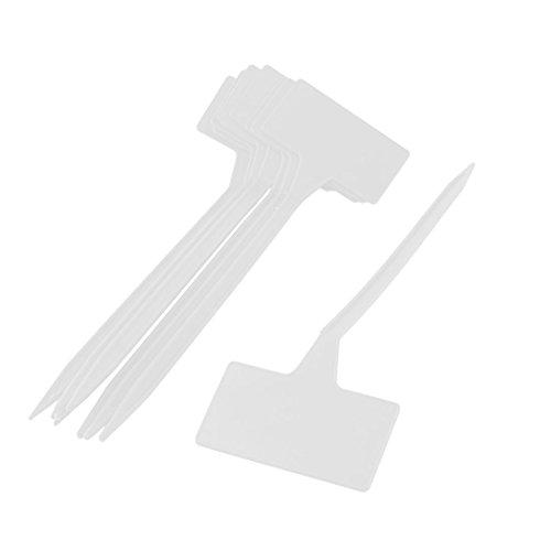 Blanc Qilegn Environ 100/pcs T Type de plante marqueurs Labels Little Outil de jardinage Accessoires