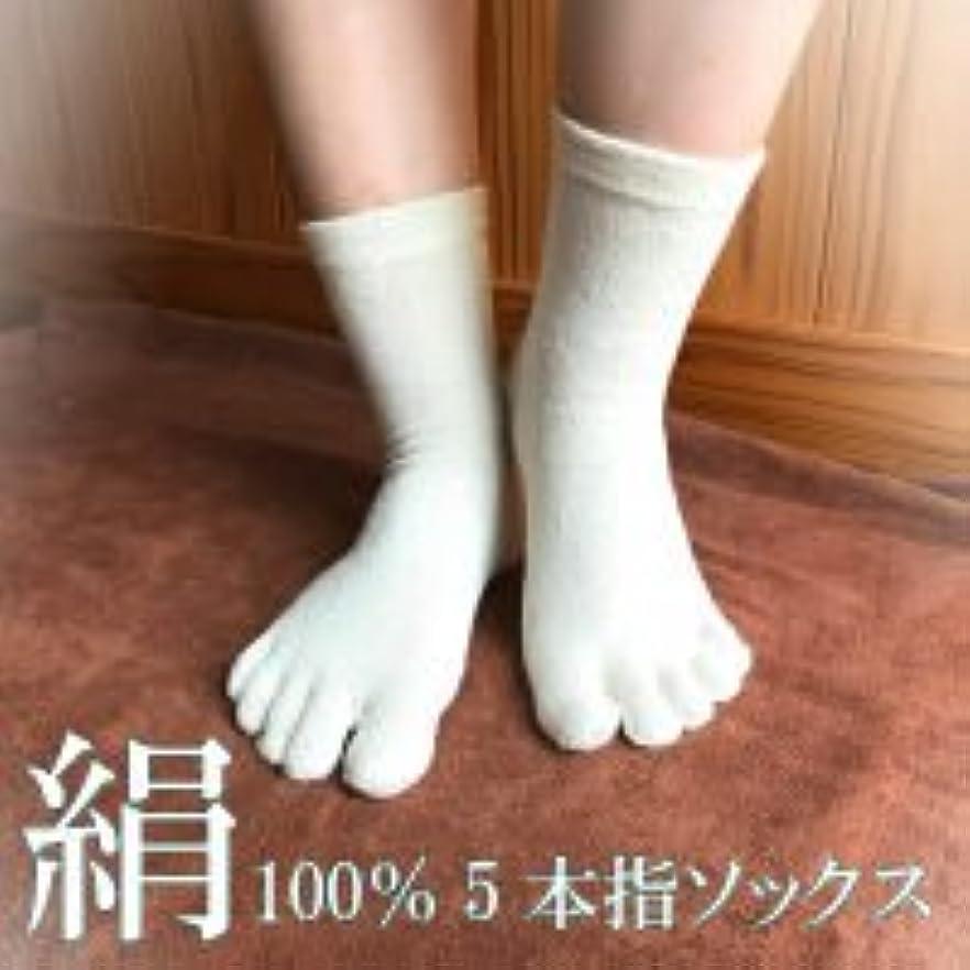 不名誉な間接的ユニークな絹100%5本指ソックス (フリー, 白)