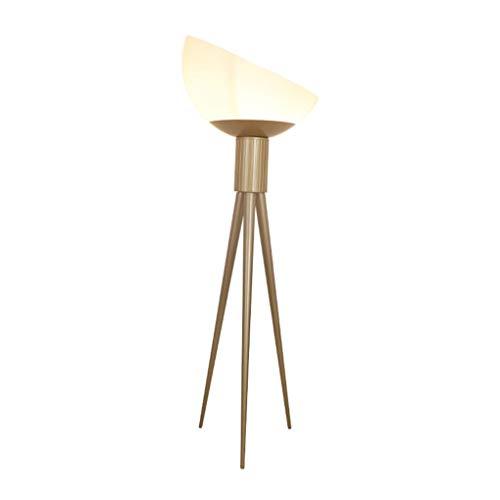 JYXJJKK lámpara de pie luz led Lámpara de pie de lámpara de pie sitio de la cama de lujo luz nórdica es adecuado for vivir estudio sala de cristal dormitorio lámpara de pie personalidad sencilla neta