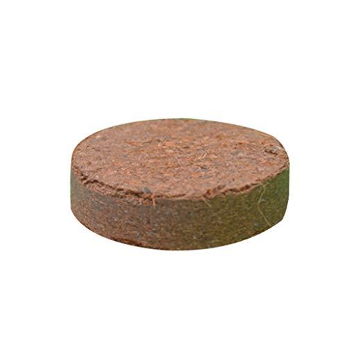 RUZYY Coconut Brick,Rtengtunn Natural Coconut Fiber Substrate Bricks Soil Essentials for Reptile Terrariums