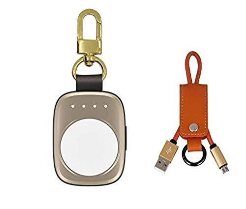 Pantheon Portable Charger Made for Apple Watch Series SE 6 and Older [Apple Certified Powerbank for Series SE 6 5 4 3 2 or 1 - MFI] - Keychain Chargers for Travel - Built in 700 mAh Power